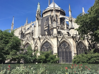Tthe Notre Dame Cathedral & Rose Garden